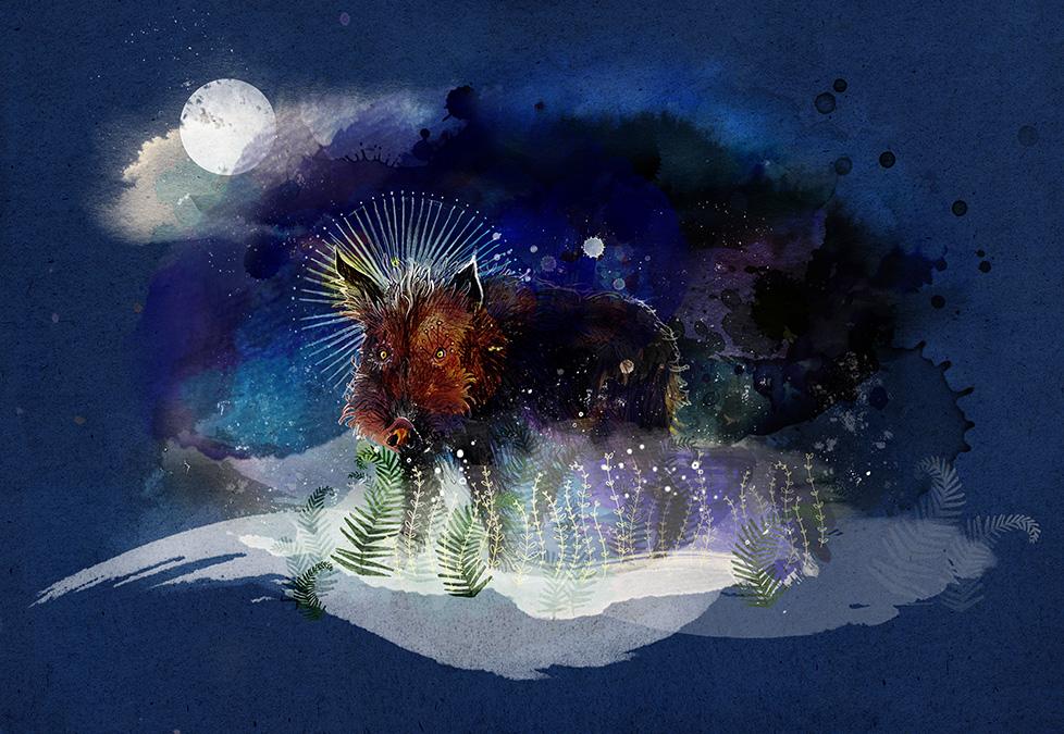 wildschweinnacht_978
